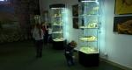 muzeum-przyrodnicze-2